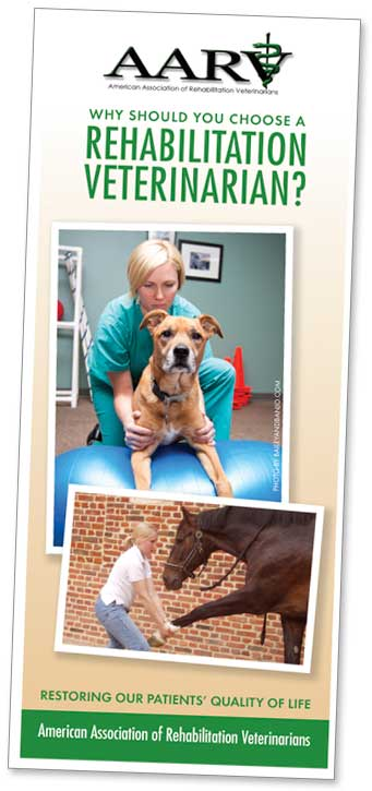 AARV Why Should You Choose a Rehabilitation Veterinarian? brochure cover