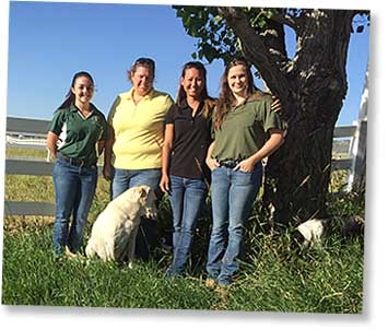 Staff members at Equine Performance Specialists